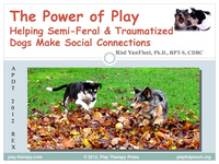 The Power of Play: Helping Semi-Feral and Traumatized Dogs Make Social Connections