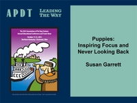 Puppies: Inspiring Focus and Never Looking Back