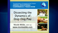 Dissecting the Dynamics of Dog-Dog Play