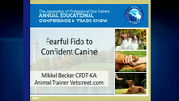 Fearful Fido to Confident Canine