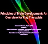 Principles of Brain Development: An Overview for Play Therapists