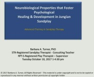 The Neurobiological Properties that Foster Psychological Healing and Development in Jungian Sandplay