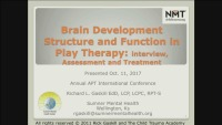 Brain Structure and Function in Play Therapy: Interview, Assessment, and Treatment Planning
