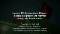 Normal TTE Examination, Doppler Echocardiography, and Normal Antegrade Flow Patterns