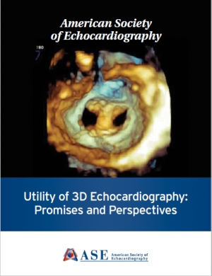 Utility of 3D Echocardiography: Promises and Perspectives