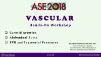 Vascular Hands-on Workshop