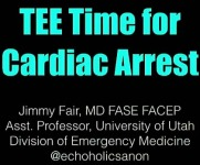 New Frontiers of POCUS - Application of Transesophageal Echocardiography in Cardiac Arrest