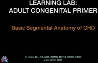 Adult Congenital Primer - Basic Segmental Anatomy of Congenital Heart Disease