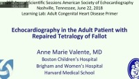 Adult Congenital Primer - Echocardiography in the ACHD Patient with Tetralogy of Fallot