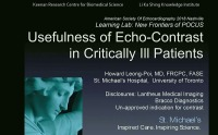 New Frontiers of POCUS - Usefulness of Echo-Contrast in Critically Ill Patients