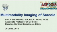 Echo in Systemic Diseases and Cardiac Masses - Multimodality Imaging of Sarcoid