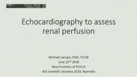 New Frontiers of POCUS - Echocardiography to Assess Renal Perfusion