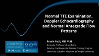 Normal TTE Examination, Doppler Echocardiography and Normal Antegrade Flow Patterns