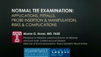 Normal TEE Examination: Applications, Pitfalls, Probe Insertion and Manipulation, Risks and Complications