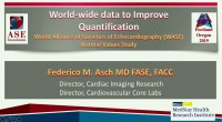 Quantification of LV Function: Is the End in Sight? - WASE: Worldwide Data to Improve Quantification