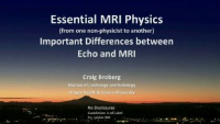 MRI Basics: What the Echocardiographer Needs to Know - Essential Physics
