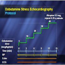 Guidelines for Performance, Interpretation, & Application of Stress Echocardiography in Ischemic Heart Disease: From the American Society of Echocardiography