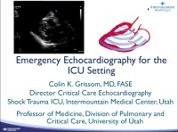 Emergency Echocardiography for the ICU Setting