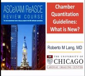 Guidelines for Chamber Quantification