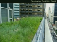 Planting in a Post-wild World: Designing Resilient Plant Communities - 1.5 PDH (LA CES/HSW)
