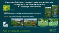 Promoting Pollinators Through Landscape Architecture: Strategies to Improve Habitat Value & Landscape Performance - 1.0 PDH (LA CES/HSW)