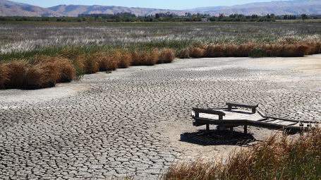 Climate Change and Resilience