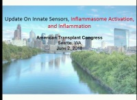 Update On Innate Sensors, Inflammasome Activation, and Inflammation