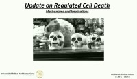 Update On Regulated Cell Death- Mechanisms and Implications