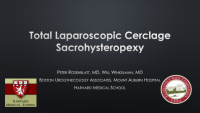 Total laparoscopic cerclage sacrohyseteropexy: A novel approach to repair of apical prolapse