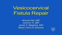 Vesicocervical Fistula Repair