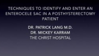 Techniques to Identify and Enter An Enterocoele Sac in A Posthysterectomy Patient