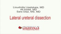 Dissection of the Ureter at the Pelvic Side Wall
