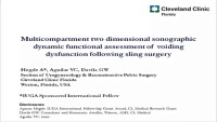 Multicompartment Two Dimensional Sonographic Dynamic Functional Assessment of Voiding Dysfunction Following Sling Surgery