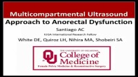 Multicompartmental Ultrasound Approach to Anorectal Dysfuntion