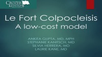 Le Fort Partial Colpocleisis: A Low-Cost Model