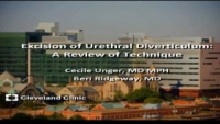 Excision of Urethral Diverticulum: A Review of Technique