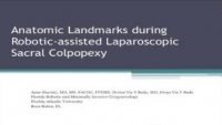 Anatomic Landmarks During Robotic-Assisted Laparoscopic Sacral Colpopexy