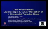 Case Report: Laparoscopic and Vulvar Resection of a Congenital Prepubic Sinus