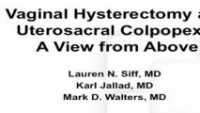 Vaginal Hysterectomy and Uterosacral Ligament Colpopexy: A View from Above