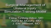 Surgical Management of Ureteral Injury: A Simulation Training Model