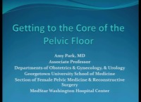 Getting to the Core of the Pelvic Floor (Rx = .5 hr.)