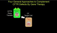 S06: NT: CFTR Gene Repair & Replacement: New Progress Toward Cystic Fibrosis Therapy
