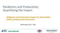 Pandemics and Productivity: Quantifying the Impact