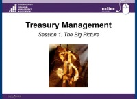 Treasury Management Part I: The Big Picture