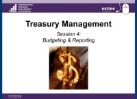 Treasury Management Part IV: Budgeting & Reporting