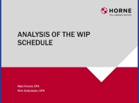 Analysis of the WIP Schedule