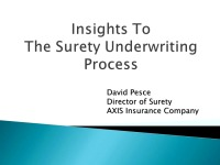 Insights to Surety Underwriting