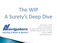 The WIP - A Surety's Deep Dive