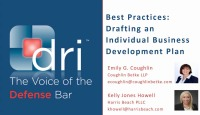Best Practices: Drafting an Individual Business Development Plan