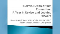 GAPNA Health Affairs Committee: A Year in Review and Looking Forward